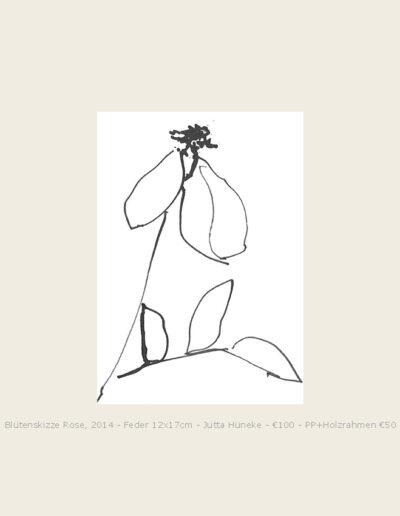 Tusche Blütenskizze Rose, lockere Federzeichnung einer verblühte Rose