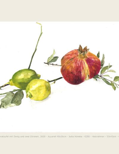 Aquarell, Granatapfel und Zitronen, Illustration, Watercolour Pomegranate and Lemon
