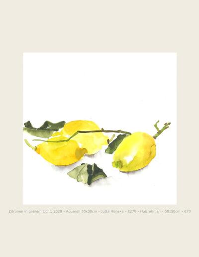 Aquarell, Zitronen in grellem Licht, Illustration, Lemons in bright Light